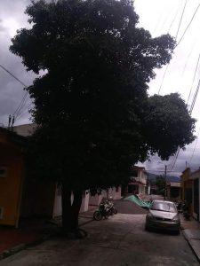 Nunca antes visto en Villavicencio